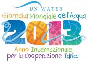 anno internazionale cooperazione idrica