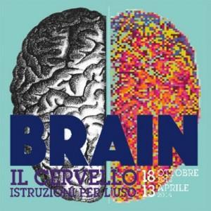 brain-il-cervello-istruzioni-per-l-uso-museo-civico-storia-naturale-milano-18-10-2013