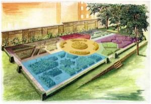 giardino dei semplici (2)