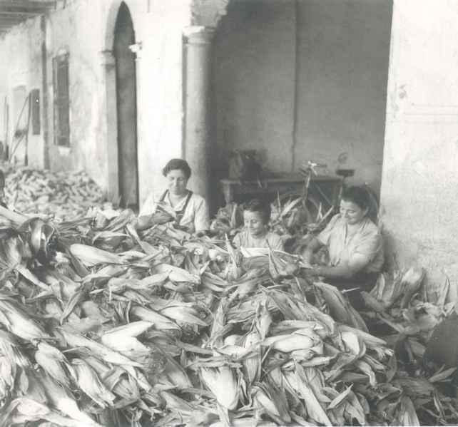 foto cascina giornale di brescia