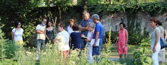 Il giardino dei semplici (2)