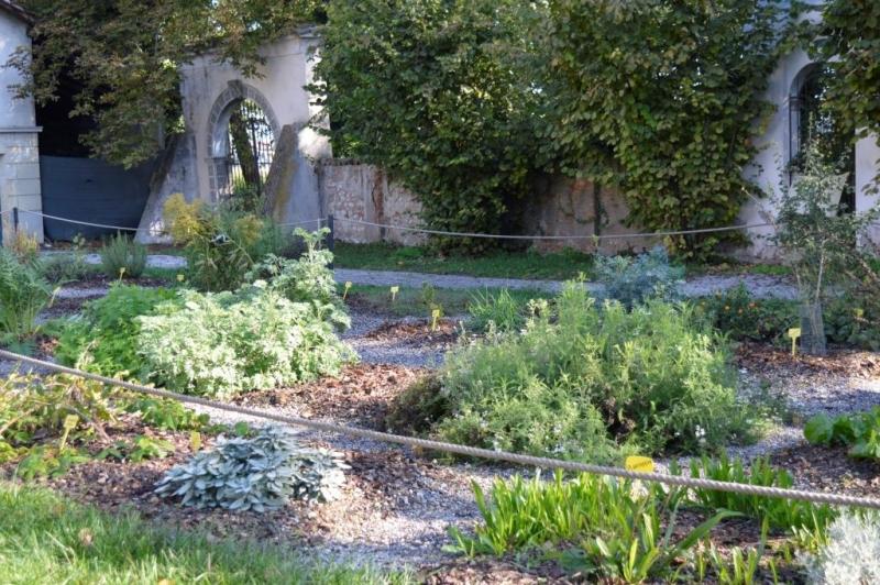 Il giardino dei semplici di villa badia fondazione dominato leonense - Il giardino dei semplici ...